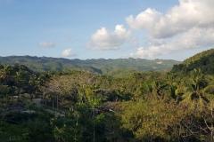 Cebu Safari park - výhled do okolní džungle