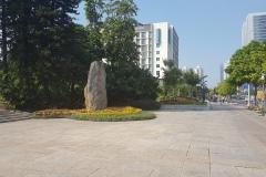 Lychee park